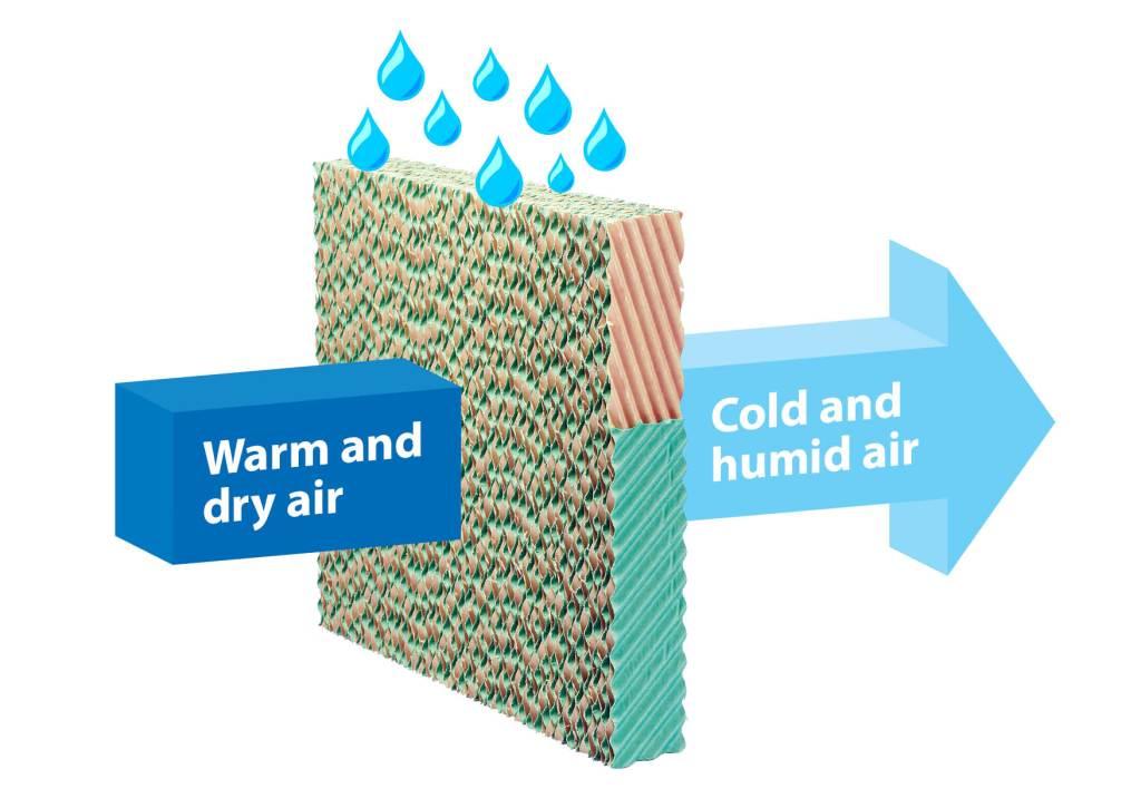 Cooling pad, Almeco