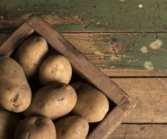 fans potato
